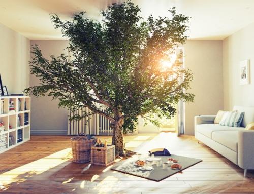Safe Home: Energieverschwendung NEIN DANKE!