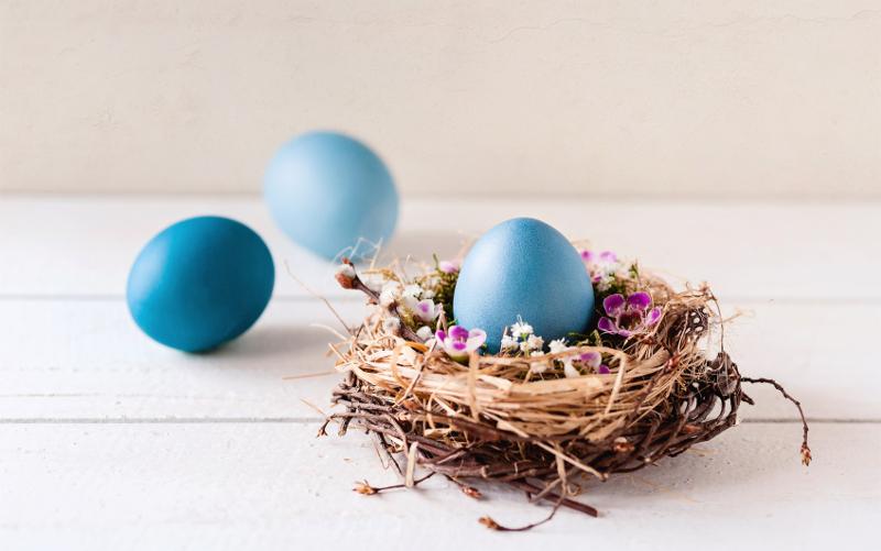 plusrente für Kinder Ostern