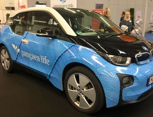 E-Mobilität: Deutsche Autobauer vor dem Wandel?