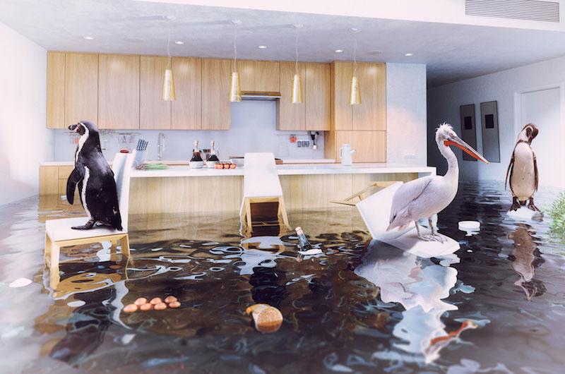 safe-home-einbruch-feuer-wasser