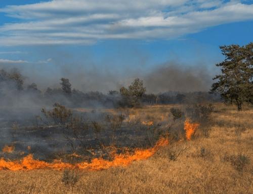 Neue GDV-Statistik: Wo brennt es am häufigsten?