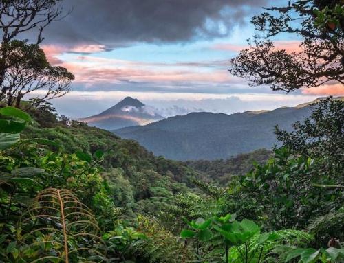Neuer Sonderbericht: Weltklimarat läutet Alarmglocken