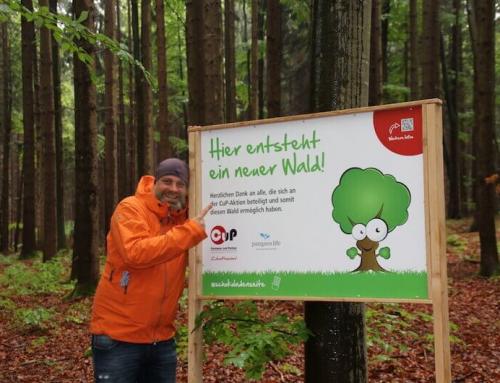 CuP und Pangae Life: Schokolade lässt Bäume wachsen