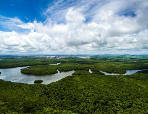Ethisch-ökologische Anlage: Private Sparer wollen nachhaltig investieren