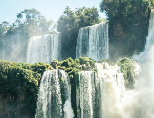 Pangaea Life: Nachhaltiges Investment für die Zukunft