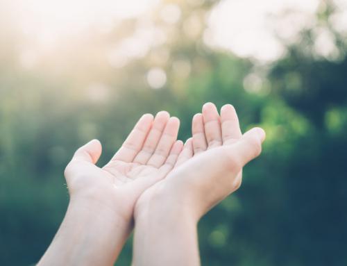 Auf Händen tragen: Desinfektionsmittel für den Büroalltag